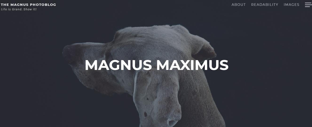 Magnus - Best Free WordPress Themes for Blogs